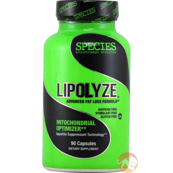 Species Nutrition Lipolyze | 90 Capsules | Fat Burner | Non-Stimulant Fat Burners