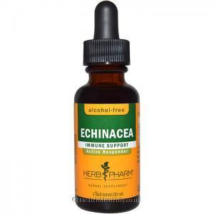 Herb Pharm Echinacea (30ml)