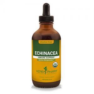 Herb Pharm Echinacea Alcohol Free (120ml)